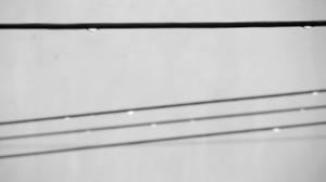 Still line drips